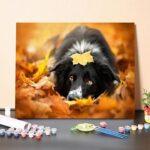 Kutya A Levelek Közt – számfestő készlet
