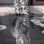 Macska Tükörképe – számfestő készlet
