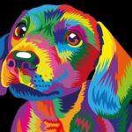 Színes Kutyus – gyerek számfestő készlet