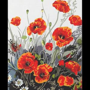 Pipacs Virágok – számfestő készlet