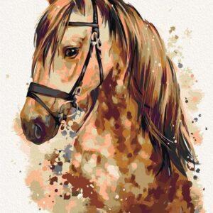 Csodálatos Ló – számfestő készlet
